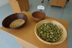 麦芽とホップ