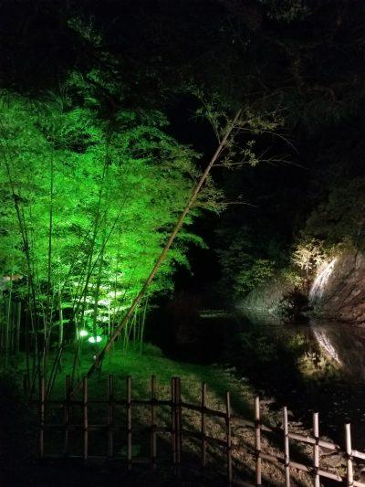 栗林公園秋のライトアップ03