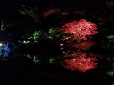 栗林公園秋のライトアップ04